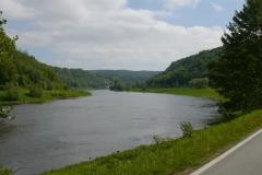 Elberadweg bei Dresden