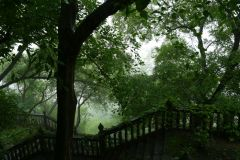 Tempelgarten
