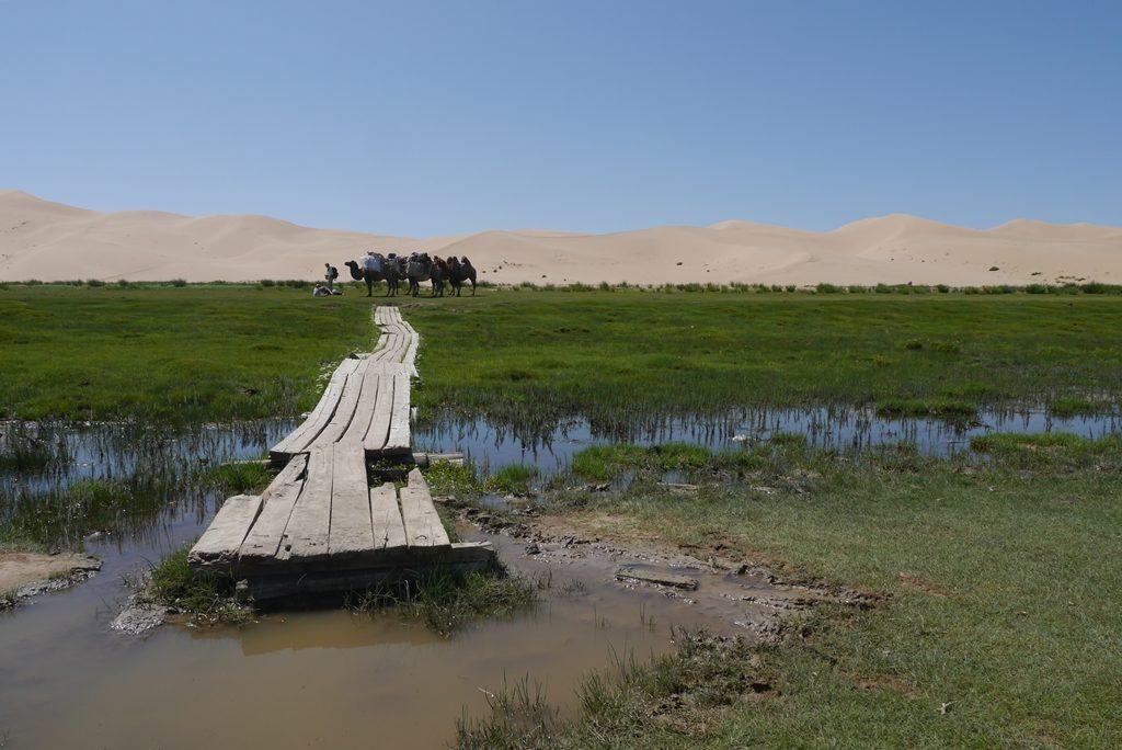 So stellt man sich die Wüste nicht wirklich vor, oder?
