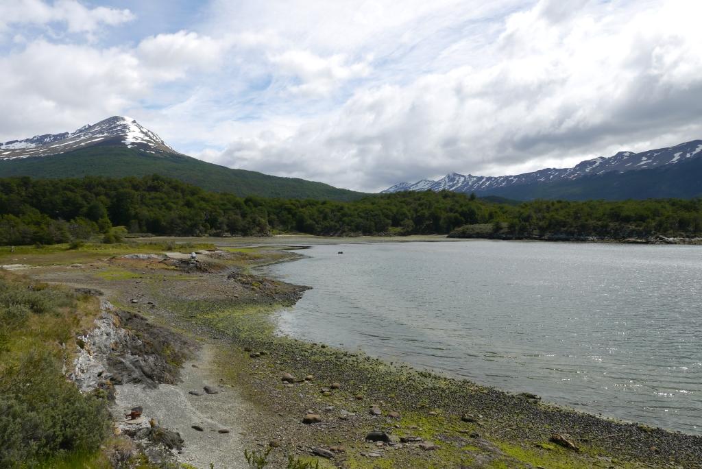 Im Nationalpark Tierra del Fuego #4